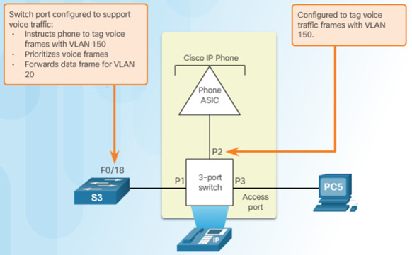 Routing and Switching Essentials 6.0 Instructor Materials – Chapter 6: VLANs 79