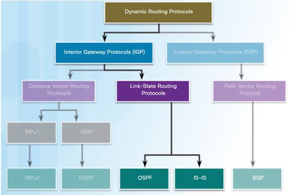 Scaling Networks v6.0 Instructor Materials – Chapter 5: Dynamic Routing 56