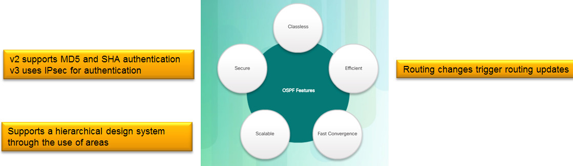 Scaling Networks v6.0 Instructor Materials – Chapter 8: Single-Area OSPF 88