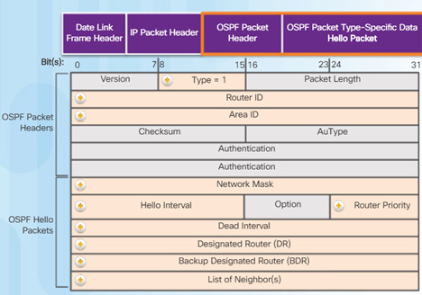 Scaling Networks v6.0 Instructor Materials – Chapter 8: Single-Area OSPF 99