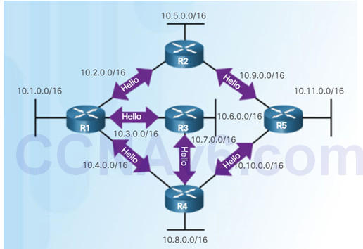 Scaling Networks v6.0 Instructor Materials – Chapter 8: Single-Area OSPF 100