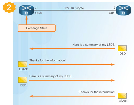 Scaling Networks v6.0 Instructor Materials – Chapter 8: Single-Area OSPF 107