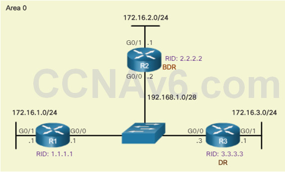 Scaling Networks v6.0 Instructor Materials – Chapter 10: OSPF Tuning and Troubleshooting 55