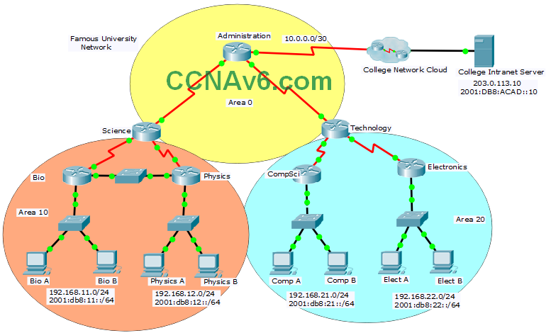 ScaN OSPF Practice Skills Assessment - PT - TYPE A