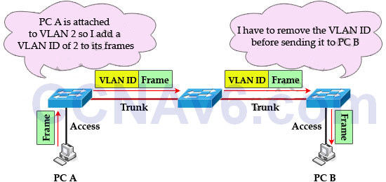 CCNA 200-125 Exam: VLAN Questions With Answers 1
