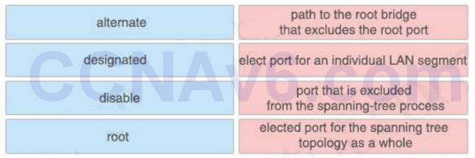 CCNA 200-125 Exam: Drag and Drop 3 With Answers 3