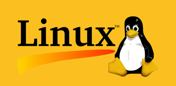 Introduction to Linux 1 Exam Answers - Test Online & Labs Active 1