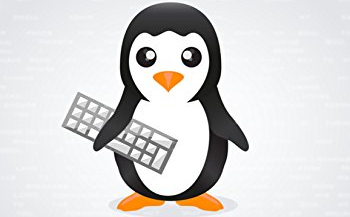 Linux Essentials Exam Answers - Test Online & Labs Active 1