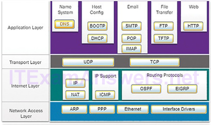 CCNA Cyber Ops (Version 1.1) – Chapter 4: Network Protocols and Services 151