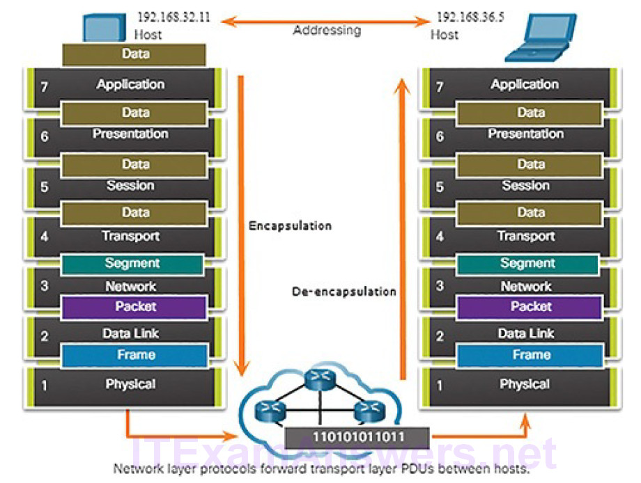 CCNA Cyber Ops (Version 1.1) – Chapter 4: Network Protocols and Services 173