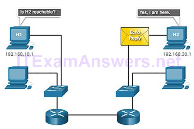 CCNA Cyber Ops (Version 1.1) – Chapter 4: Network Protocols and Services 205