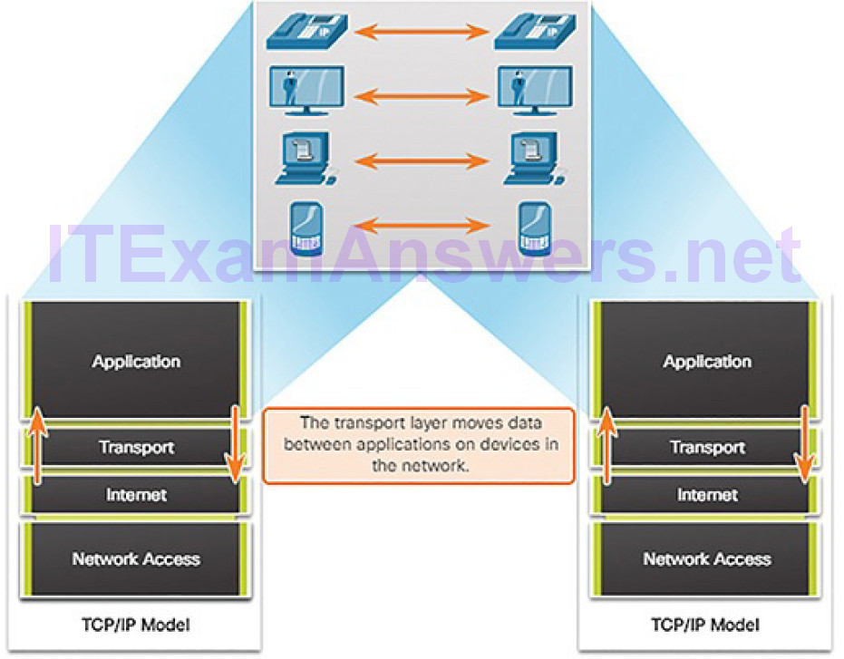 CCNA Cyber Ops (Version 1.1) – Chapter 4: Network Protocols and Services 230