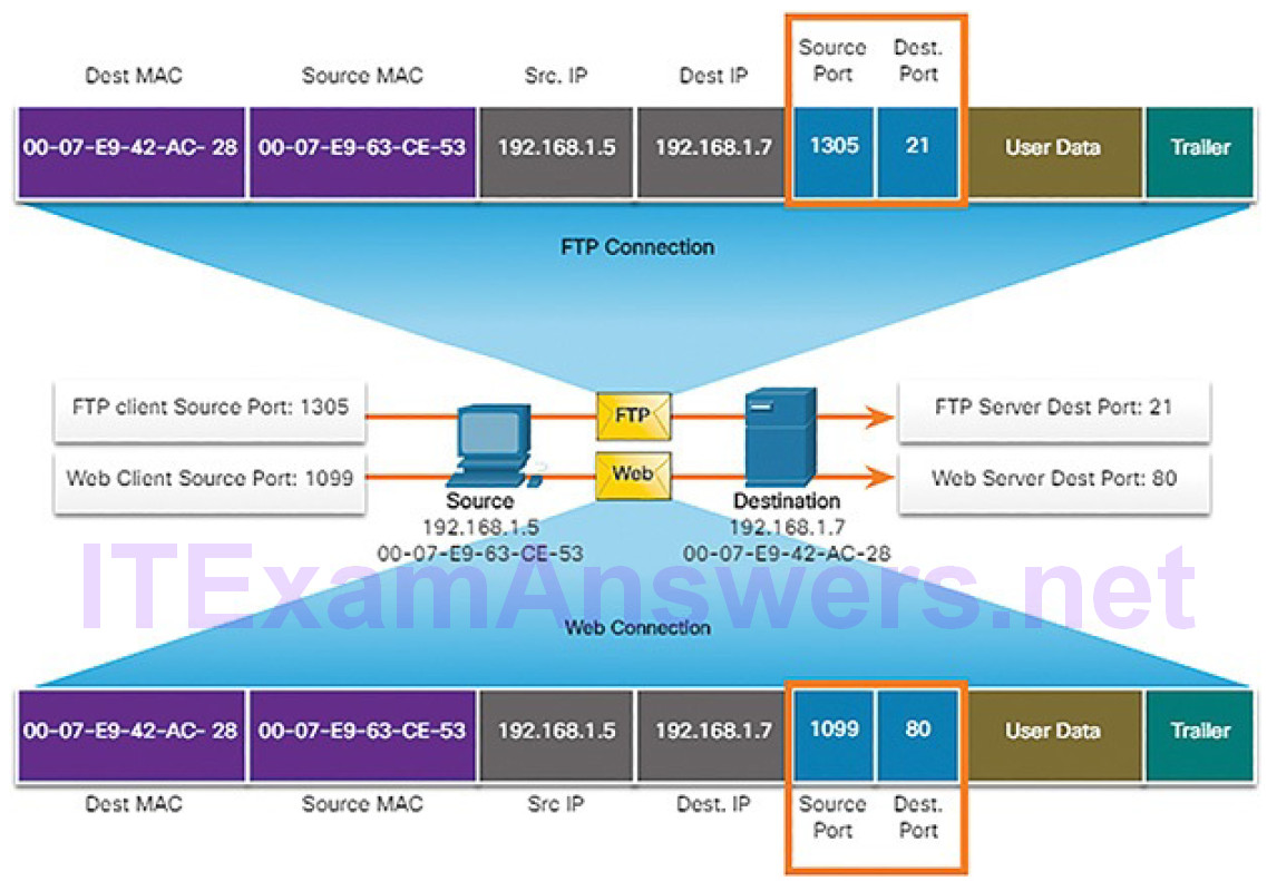 CCNA Cyber Ops (Version 1.1) – Chapter 4: Network Protocols and Services 236