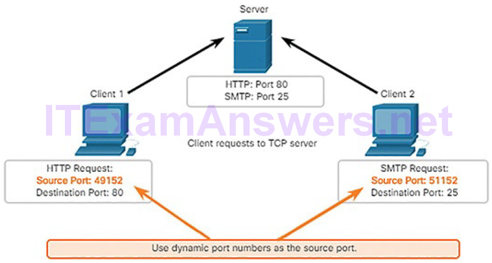 CCNA Cyber Ops (Version 1.1) – Chapter 4: Network Protocols and Services 248