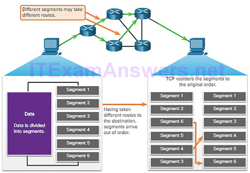 CCNA Cyber Ops (Version 1.1) – Chapter 4: Network Protocols and Services 254