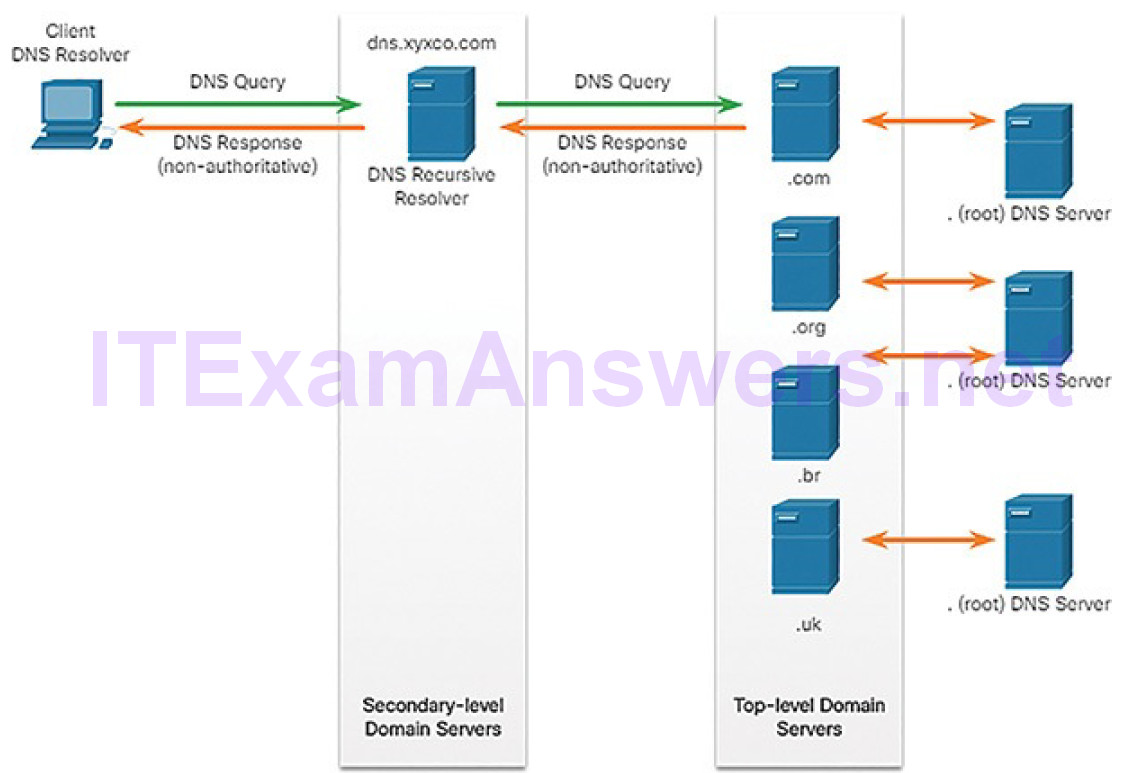CCNA Cyber Ops (Version 1.1) – Chapter 4: Network Protocols and Services 264
