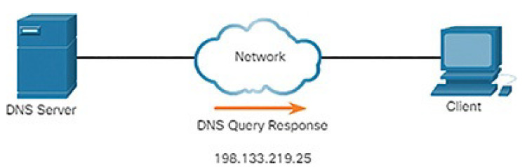 CCNA Cyber Ops (Version 1.1) – Chapter 4: Network Protocols and Services 268