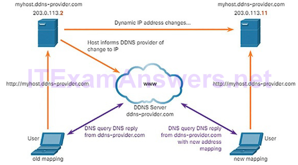 CCNA Cyber Ops (Version 1.1) – Chapter 4: Network Protocols and Services 271