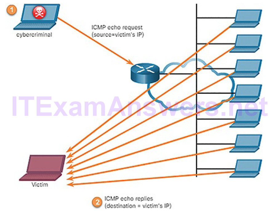 CCNA Cyber Ops (Version 1.1) – Chapter 7: Network Attacks: A Deeper Look 38