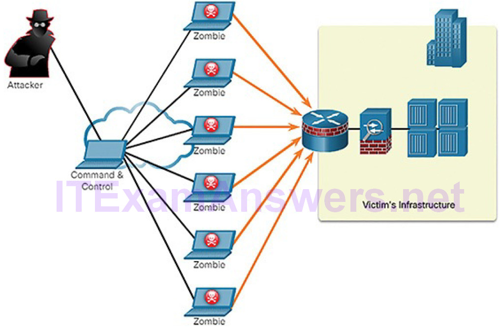 CCNA Cyber Ops (Version 1.1) – Chapter 7: Network Attacks: A Deeper Look 39