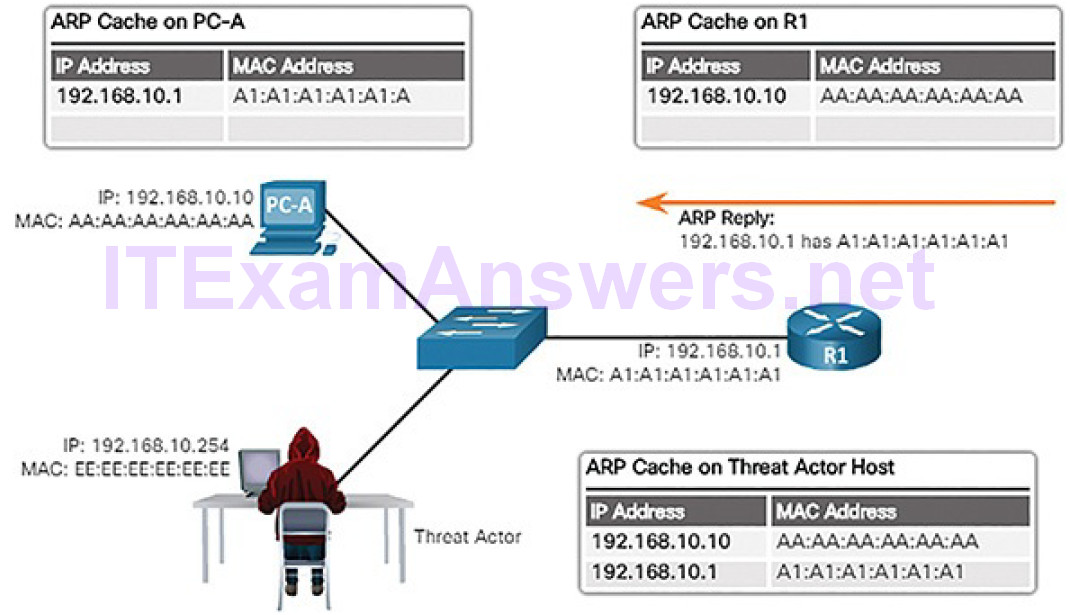 CCNA Cyber Ops (Version 1.1) – Chapter 7: Network Attacks: A Deeper Look 50