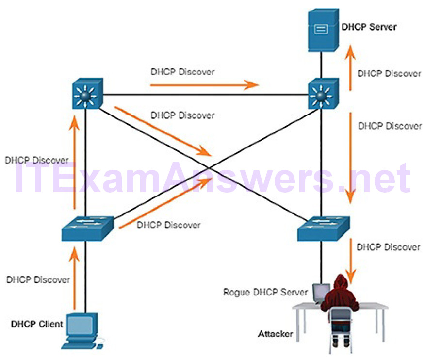 CCNA Cyber Ops (Version 1.1) – Chapter 7: Network Attacks: A Deeper Look 53