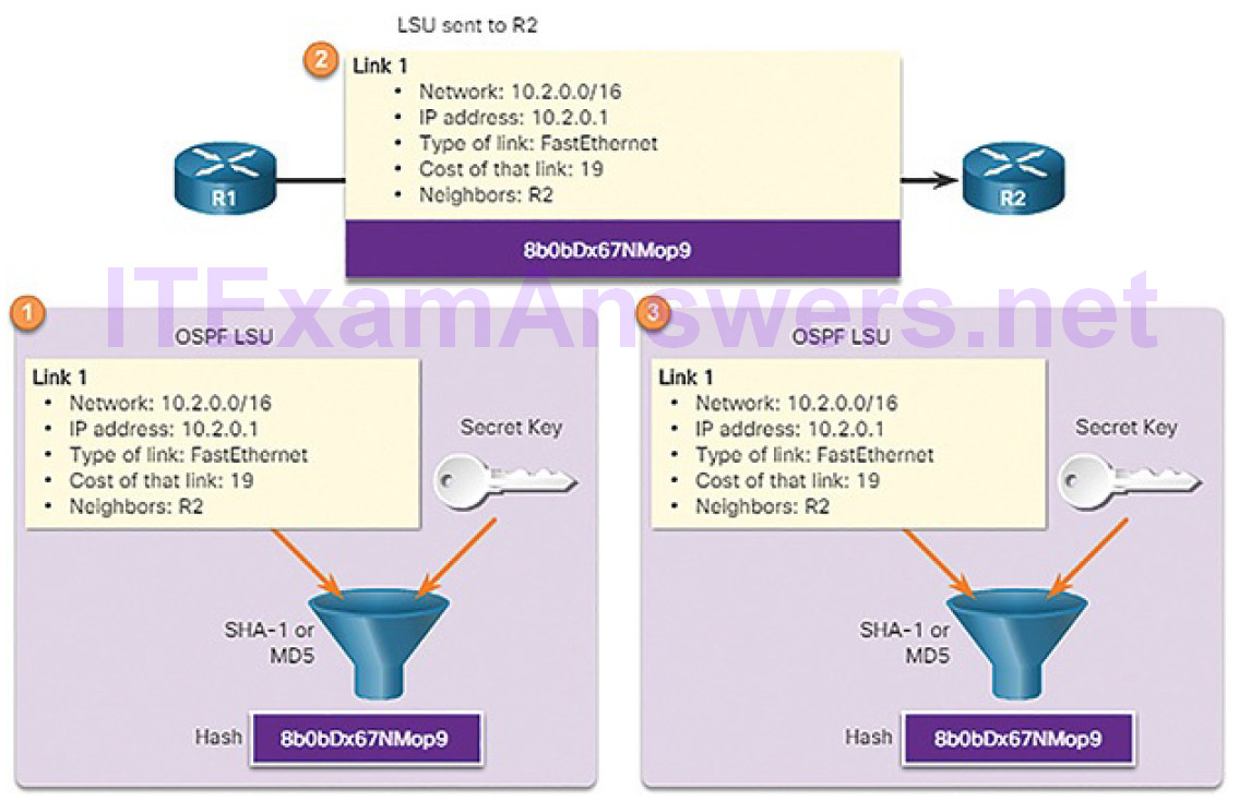 CCNA Cyber Ops (Version 1.1) – Chapter 9: Cryptography and the Public Key Infrastructure 79