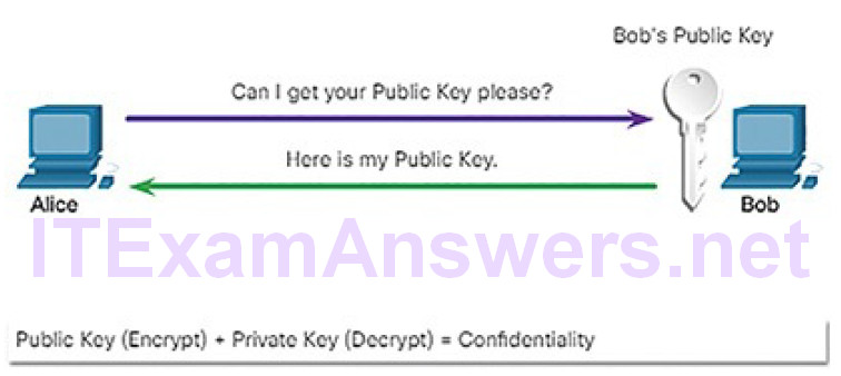 CCNA Cyber Ops (Version 1.1) – Chapter 9: Cryptography and the Public Key Infrastructure 84