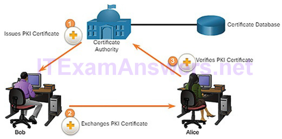 CCNA Cyber Ops (Version 1.1) – Chapter 9: Cryptography and the Public Key Infrastructure 106