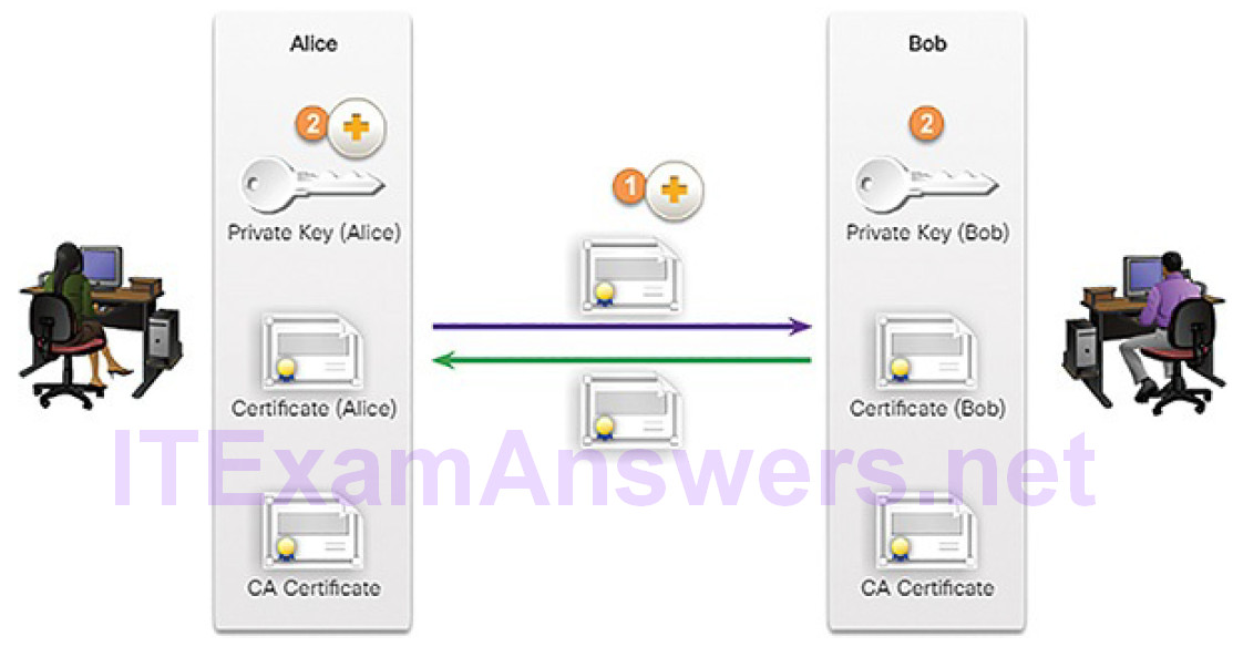 CCNA Cyber Ops (Version 1.1) – Chapter 9: Cryptography and the Public Key Infrastructure 114
