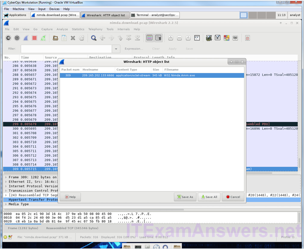 12.2.2.10 Lab – Extract an Executable from a PCAP (Instructor Version) 6