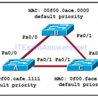 ITExamAnswers net - Free CCNA Exam Answers 2019 - Study CCNA
