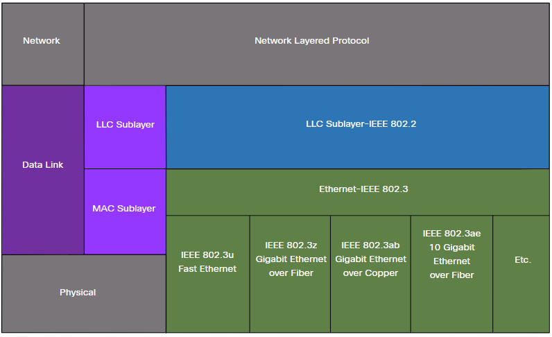 CCNA 1 v7.0 Curriculum: Module 7 - Ethernet Switching 26