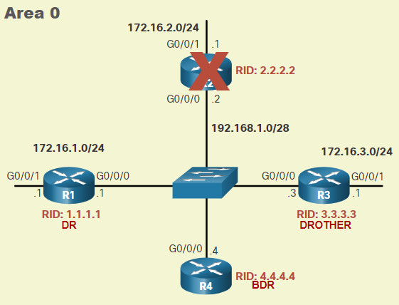 CCNA 3 v7.0 Curriculum: Module 2 - Single-Area OSPFv2 Configuration 37