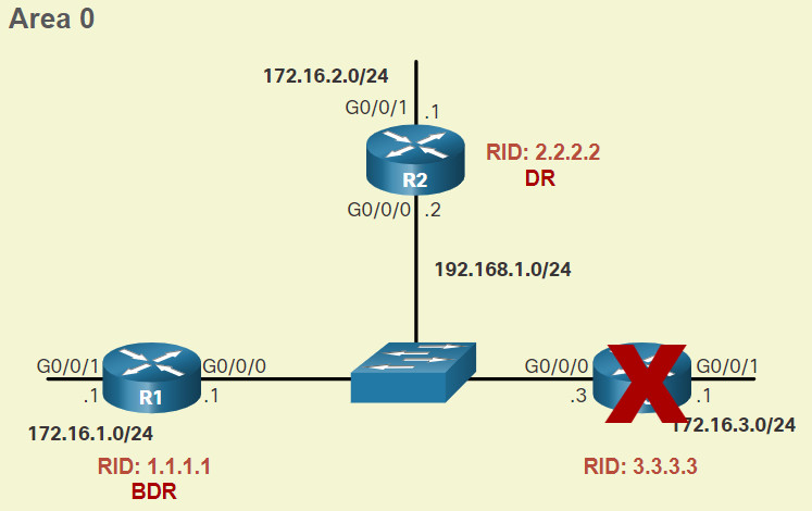 CCNA 3 v7.0 Curriculum: Module 2 - Single-Area OSPFv2 Configuration 34