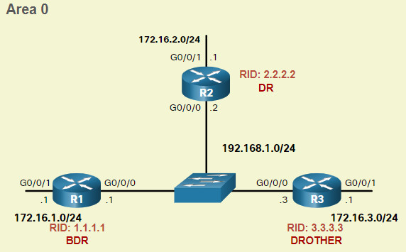 CCNA 3 v7.0 Curriculum: Module 2 - Single-Area OSPFv2 Configuration 35