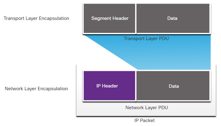CyberOps Associate: Module 6 – Ethernet and Internet Protocol (IP) 39