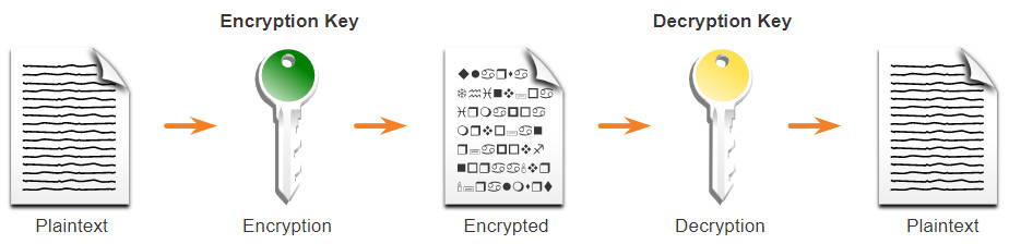 CyberOps Associate: Module 21 – Cryptography 50