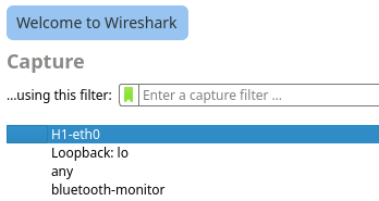 5.3.7 Lab - Introduction to Wireshark (Answers) 10