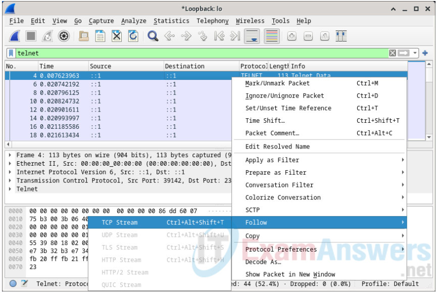 16.3.12 Lab - Examining Telnet and SSH in Wireshark Answers 4