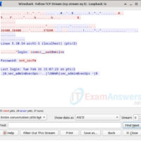 16.3.12 Lab - Examining Telnet and SSH in Wireshark Answers 11